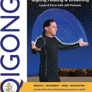 qigong healing level 2 video