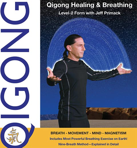 Qigong Healing Level 2 Form Video