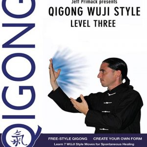 qigong healing level 3 video