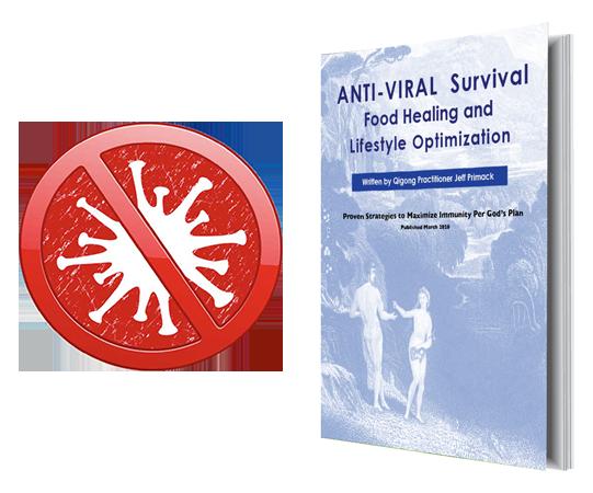 anti viral food healing